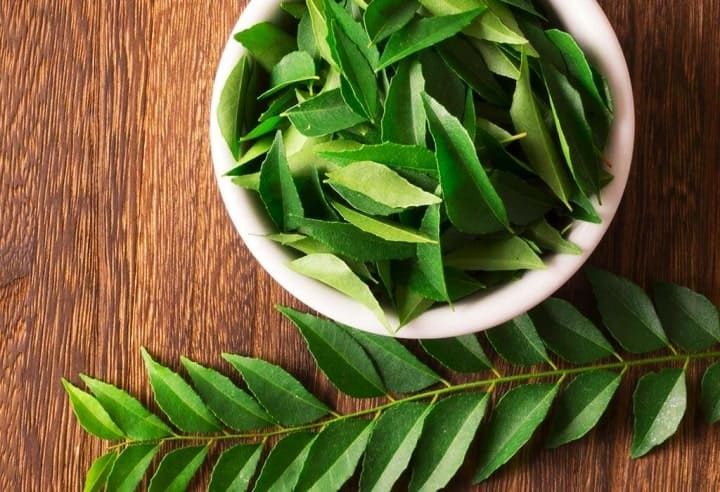 Curry Leaves to lose weight fast
